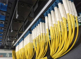 Fiber Cable Management