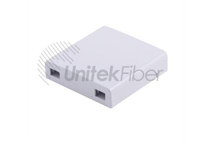 Supply 2 Port Fiber Optic Faceplate & FTTH Terminal Box