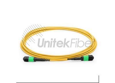 Method A Pigtail 3mm Trunk 12 to 144 Cores MTP MPO Fiber Optic Jumper