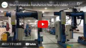 What company owns the most fiber optic cables?